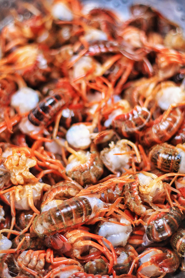 shellfish-crustacean-seafood-food-crab 图片素材