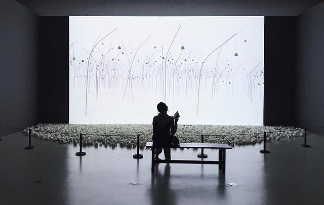 黑白,展览,人,上海 picture material