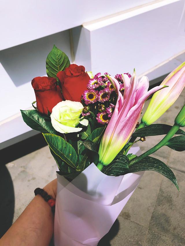 flower-no-person-plant-leaf-bouquet picture material