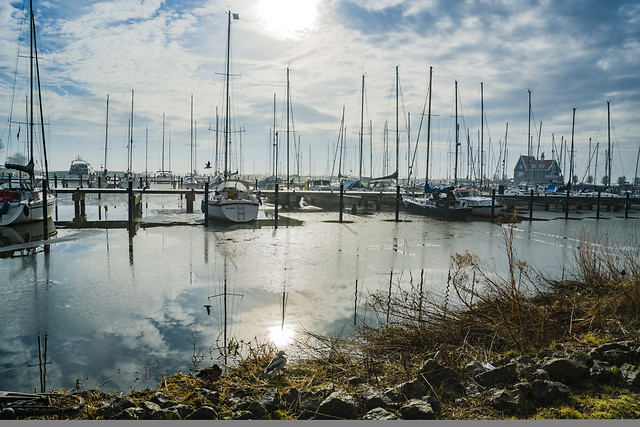 water-harbor-sea-pier-marina picture material