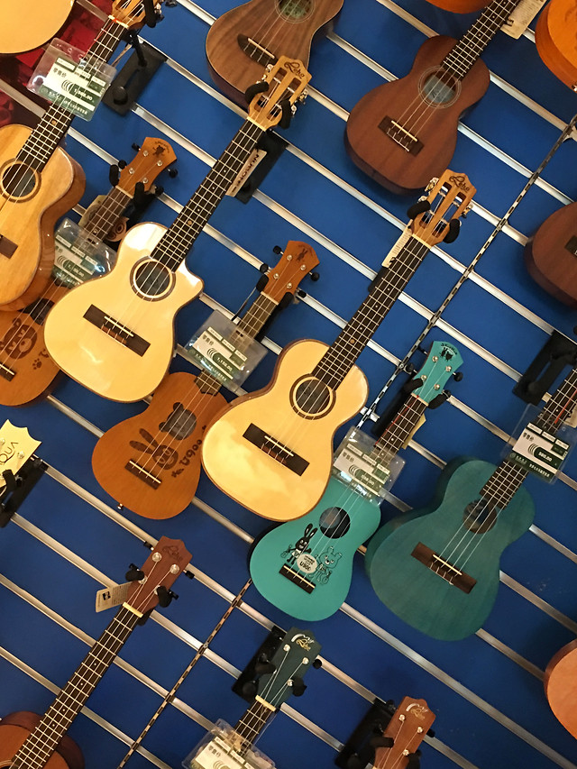 guitar-music-instrument-bowed-stringed-instrument-acoustic picture material