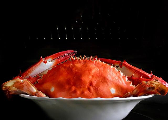 food-no-person-seafood-shellfish-restaurant 图片素材