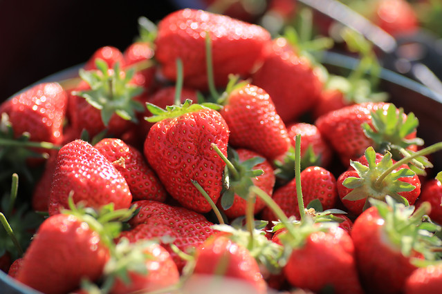 strawberry-fruit-food-natural-foods-strawberries picture material
