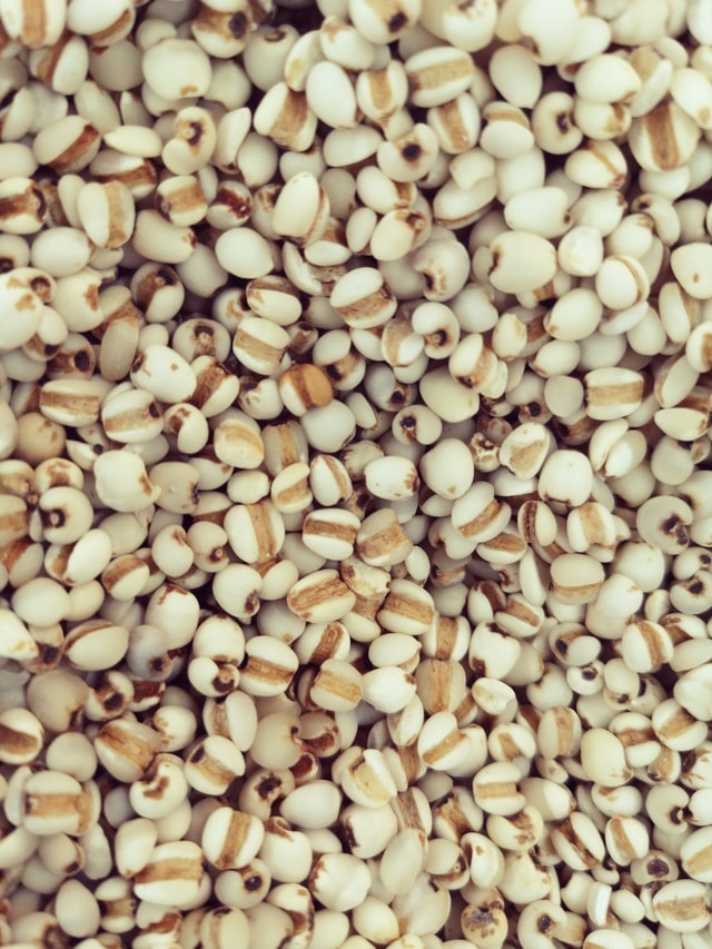 seed-cereal-dry-no-person-nutrition 图片素材