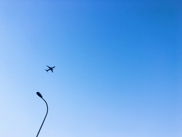 sky-flight-airplane-air-aircraft picture material