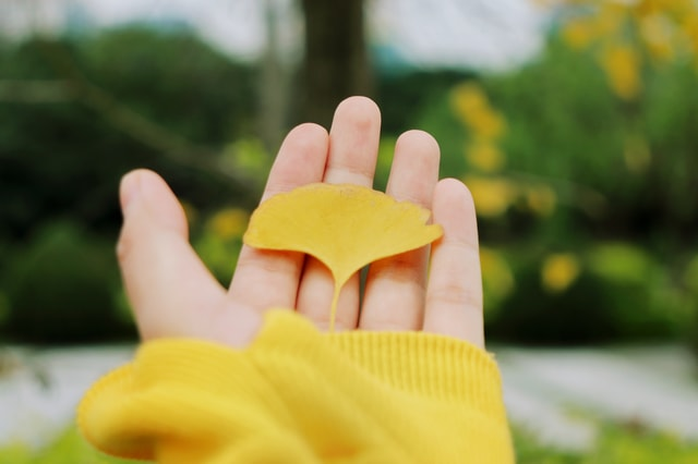 color-finger-yellow-hand-gesture picture material