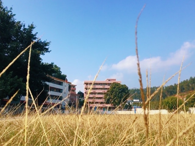 the-weather-color-rural-sky-grass 图片素材
