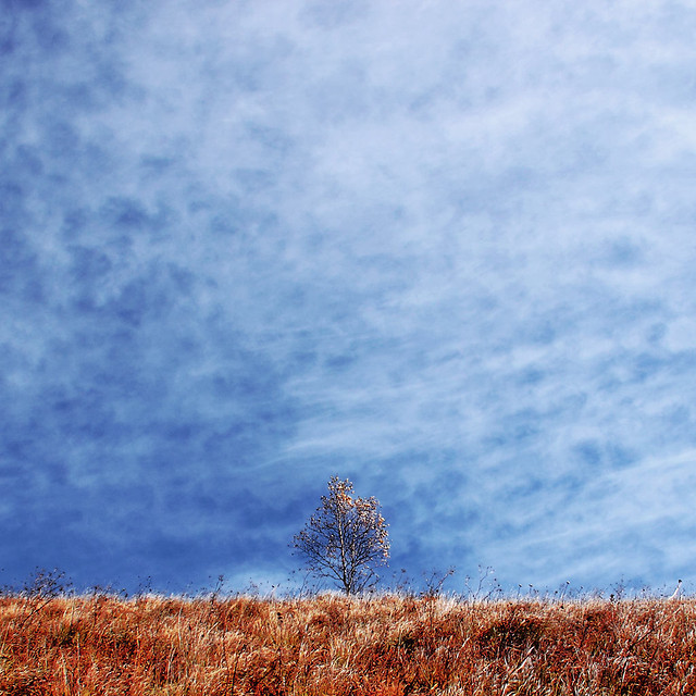 sky-nature-no-person-fall-landscape picture material