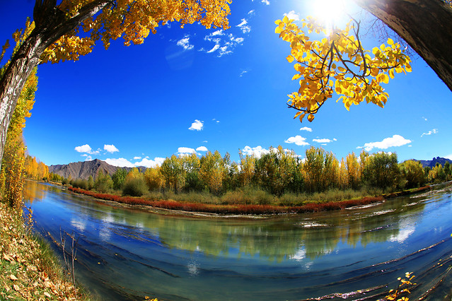 fall-lake-nature-tree-landscape picture material