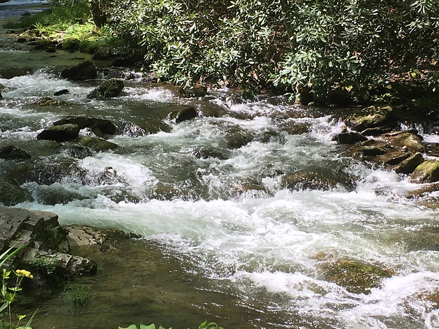 water-stream-waterfall-nature-river picture material
